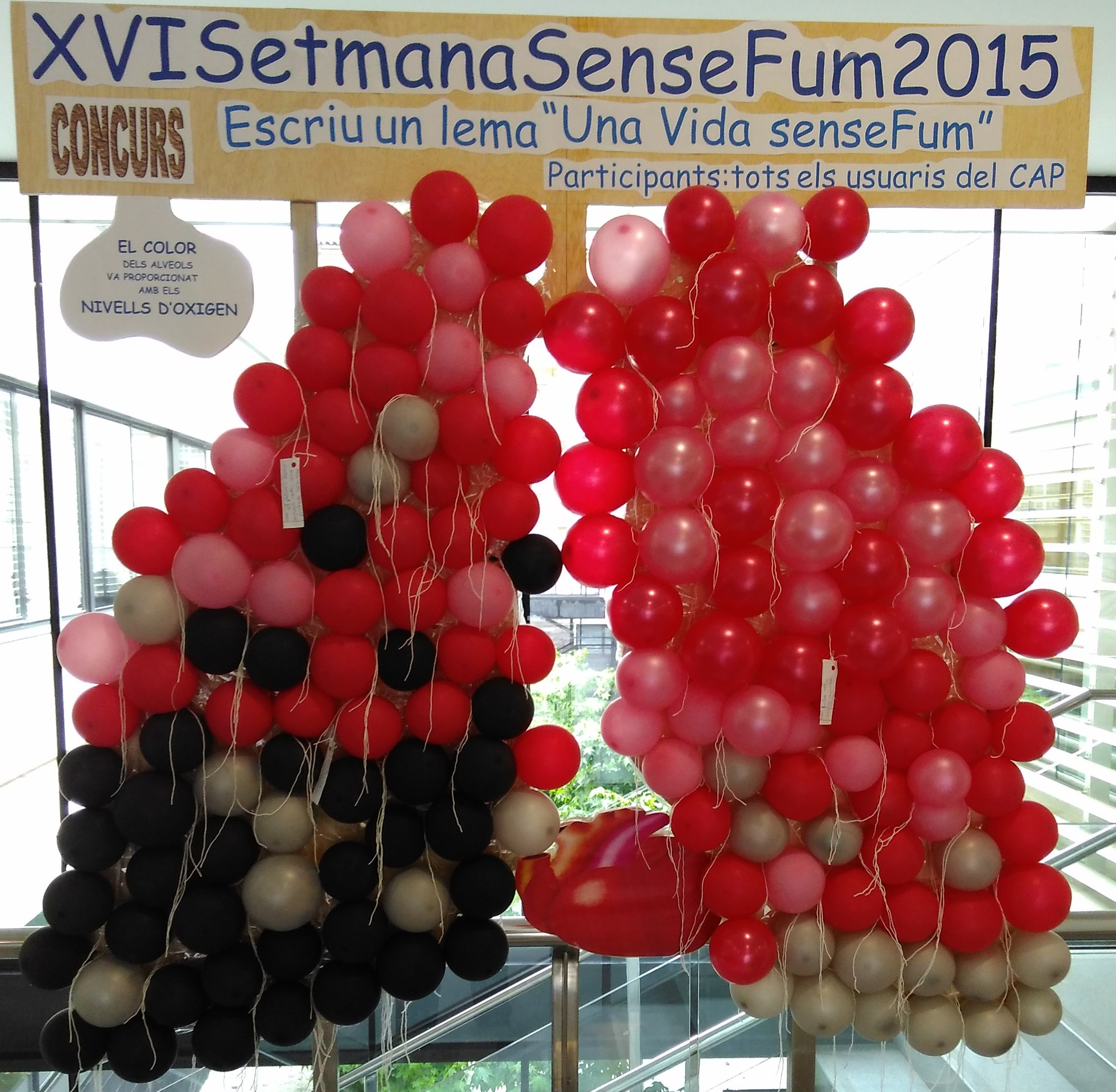 Pulmons amb globus